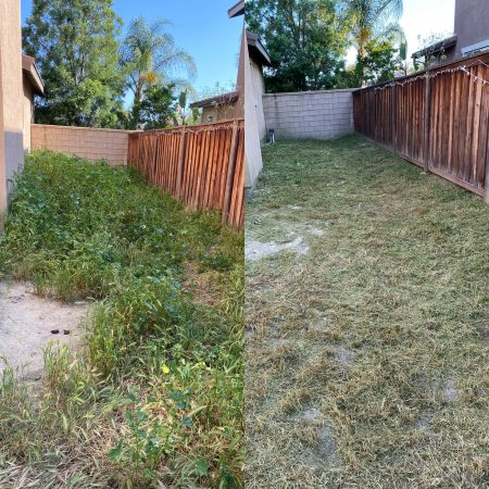 Riverside Yard Clean Up